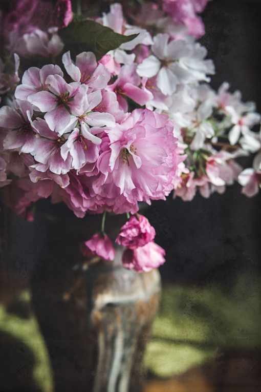 photoshop texture on flower photo