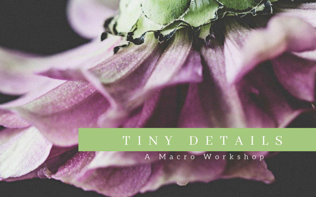 New Workshop – Tiny Details – A Macro Workshop
