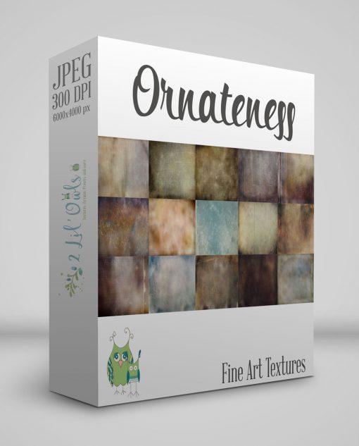 ornateness-fine-art-texture-overlays-for-photoshop