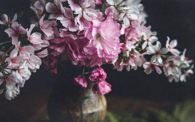 Behind The Scenes And Watch Me Edit Spring Blooms