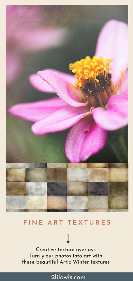 Textures for photography