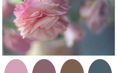 Creating Your Own Custom Color Palettes In Photoshop